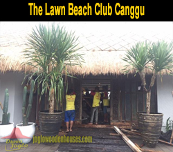 The Lawn Beach Club Canggu-thum